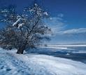 κεκρινη χειμωνας